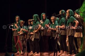 Robin Hood DR LRwm-2713