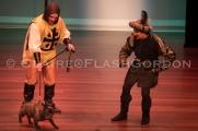 Robin Hood DR LRwm-2938