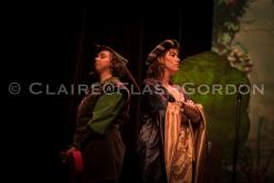 Robin Hood Dress LRwm-2523