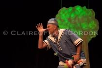 Robin Hood Dress LRwm-2544