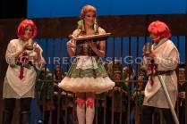 Robin Hood Dress LRwm-2659